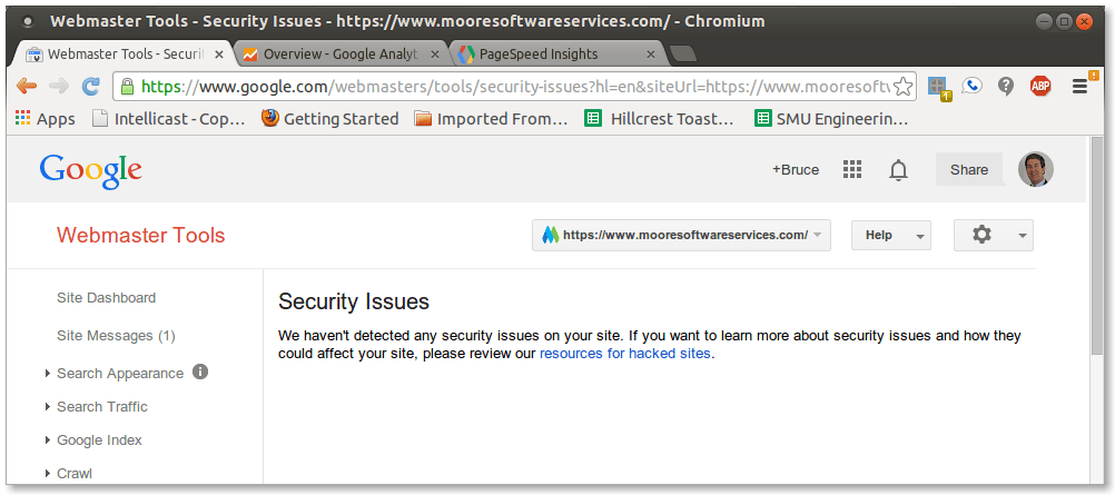 Example of a Google Webmaster Tools security issues report showing no detected security issues on the site.